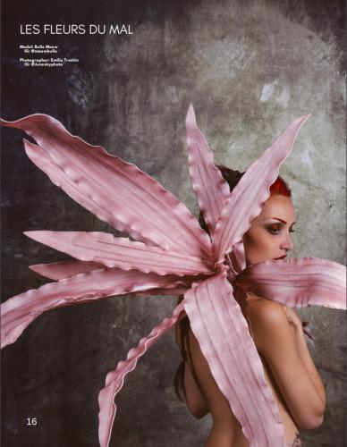 boulevard magazine aout 2019